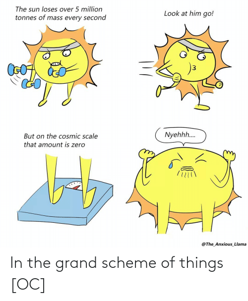 things: In the grand scheme of things [OC]