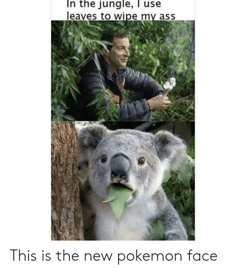 Ass, Pokemon, and Reddit: In the jungle, l use  leaves to wipe my ass This is the new pokemon face