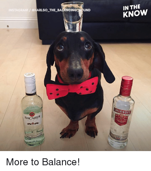 Memes, 🤖, and Balance: IN THE  KNOW  @HARLSO THE_BALANeING HOUND  MIRNOFF  BACARD More to Balance!