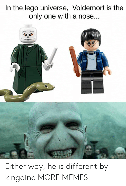 Dank, Lego, and Memes: In the lego universe, Voldemort is the  only one with a nose Either way, he is different by kingdine MORE MEMES