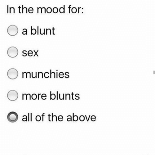 Blunted: In the mood for:  a blunt  O sex  O munchies  more blunts  O all of the above