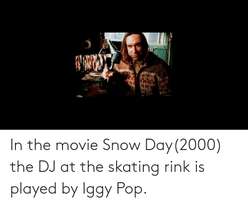 Rink: In the movie Snow Day(2000) the DJ at the skating rink is played by Iggy Pop.