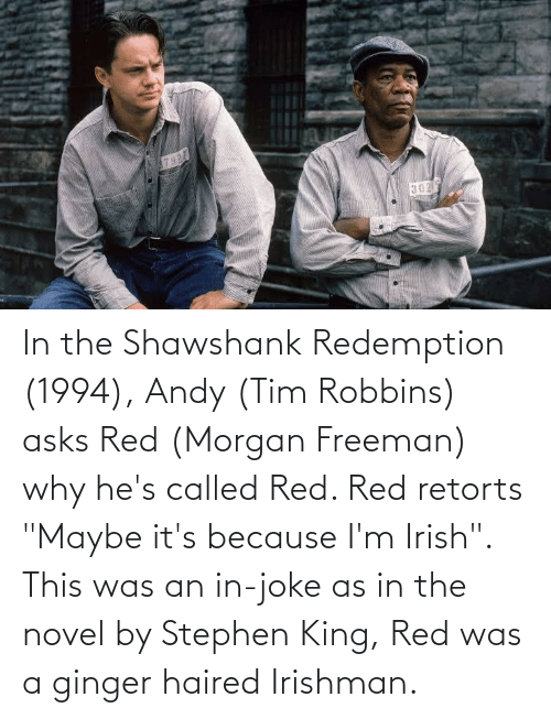 """freeman: In the Shawshank Redemption (1994), Andy (Tim Robbins) asks Red (Morgan Freeman) why he's called Red. Red retorts """"Maybe it's because I'm Irish"""". This was an in-joke as in the novel by Stephen King, Red was a ginger haired Irishman."""