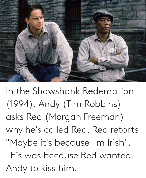 """freeman: In the Shawshank Redemption (1994), Andy (Tim Robbins) asks Red (Morgan Freeman) why he's called Red. Red retorts """"Maybe it's because I'm Irish"""". This was because Red wanted Andy to kiss him."""