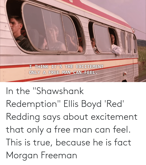 """freeman: In the """"Shawshank Redemption"""" Ellis Boyd 'Red' Redding says about excitement that only a free man can feel. This is true, because he is fact Morgan Freeman"""