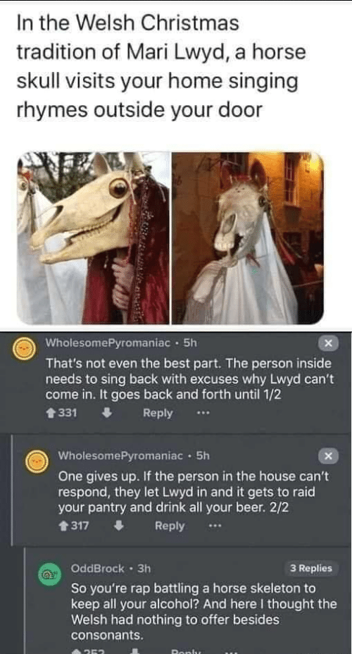 raid: In the Welsh Christmas  tradition of Mari Lwyd, a horse  skull visits your home singing  rhymes outside your door  WholesomePyromaniac · 5h  That's not even the best part. The person inside  needs to sing back with excuses why Lwyd can't  come in. It goes back and forth until 1/2  會331  Reply  WholesomePyromaniac · 5h  One gives up. If the person in the house can't  respond, they let Lwyd in and it gets to raid  your pantry and drink all your beer. 2/2  1317  Reply  OddBrock · 3h  3 Replies  So you're rap battling a horse skeleton to  keep all your alcohol? And here I thought the  Welsh had nothing to offer besides  consonants.  Ronlu