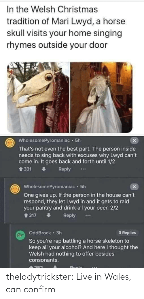 Thats Not: In the Welsh Christmas  tradition of Mari Lwyd, a horse  skull visits your home singing  rhymes outside your door  WholesomePyromaniac · 5h  That's not even the best part. The person inside  needs to sing back with excuses why Lwyd can't  come in. It goes back and forth until 1/2  會331  Reply  WholesomePyromaniac · 5h  One gives up. If the person in the house can't  respond, they let Lwyd in and it gets to raid  your pantry and drink all your beer. 2/2  1317  Reply  OddBrock · 3h  3 Replies  So you're rap battling a horse skeleton to  keep all your alcohol? And here I thought the  Welsh had nothing to offer besides  consonants.  Ronlu theladytrickster:  Live in Wales, can confirm