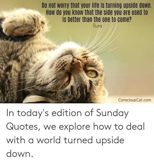 edition: In today's edition of Sunday Quotes, we explore how to deal with a world turned upside down.