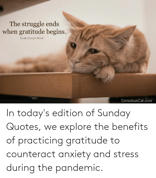 edition: In today's edition of Sunday Quotes, we explore the benefits of practicing gratitude to counteract anxiety and stress during the pandemic.