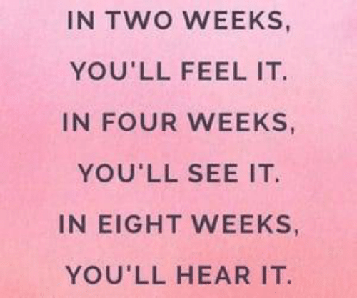 Two Weeks, Feel, and  See: IN TWO WEEKS  YOU'LL FEEL IT  IN FOUR WEEKS  YOU'LL SEE IT  IN EIGHT WEEKS,  YOU'LL HEAR IT.