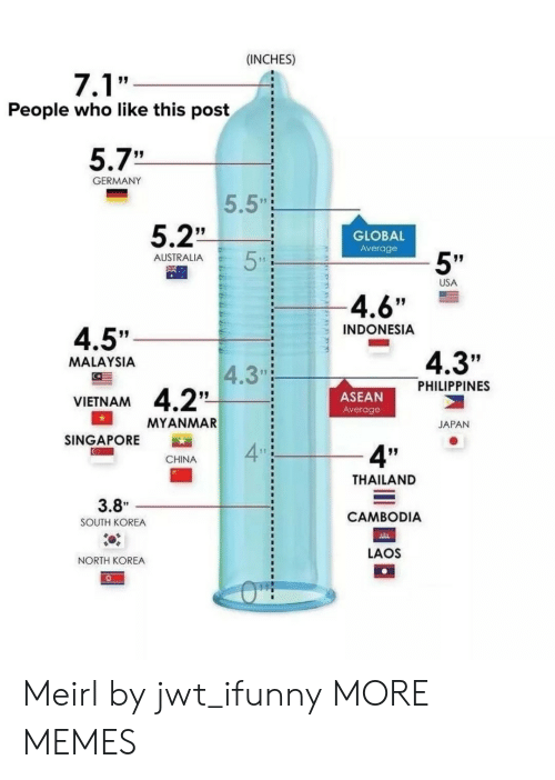 """Dank, Memes, and North Korea: (INCHES)  People who like this post  5.7""""  GERMANY  5.5""""  5.2""""  GLOBAL  Average  5""""  AUSTRALIA  USA  4.6""""  INDONESIA  4.5""""  4.3""""  MALAYSIA  4.3""""  PHILIPPINES  ASEAN  Average  VIETNAM  MYANMAR  JAPAN  SINGAPORE  4  4""""  CHINA  THAILAND  CAMBODIA  LAOS  3.8""""  SOUTH KOREA  NORTH KOREA Meirl by jwt_ifunny MORE MEMES"""