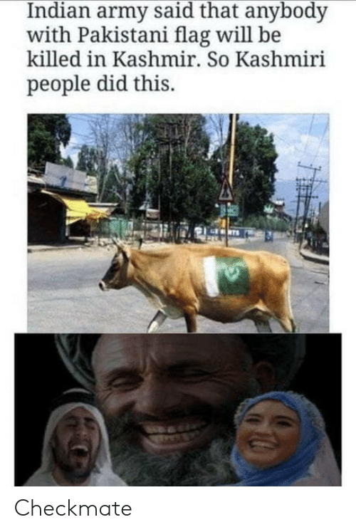 Army, Kashmiri, and Indian: Indian army said that anybody  with Pakistani flag will be  killed in Kashmir. So Kashmiri  people did this. Checkmate