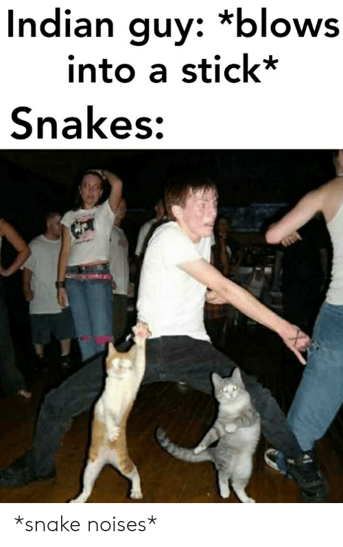 Snakes: Indian guy: *blows  into a stick*  Snakes: *snake noises*