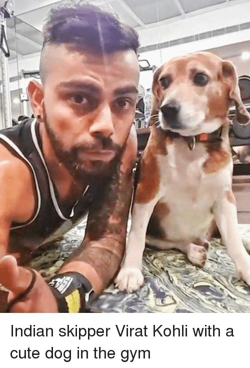 cute dogs: Indian skipper Virat Kohli with a cute dog in the gym
