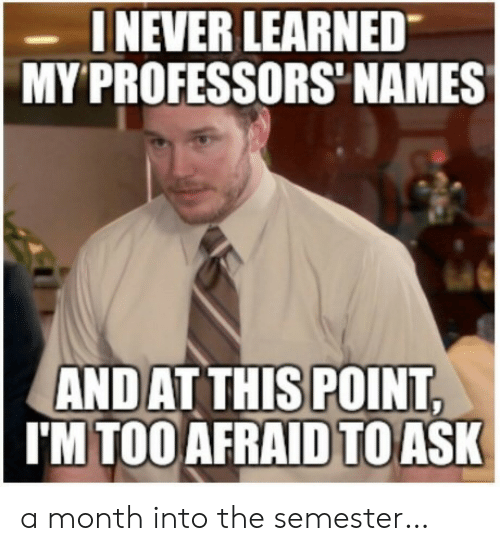 Too Afraid To Ask: INEVER LEARNED  MY PROFESSORS NAMES  ANDAT THIS POINT,  I'M TOO AFRAID TO ASK a month into the semester…