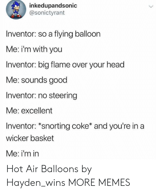 Steering: inkedupandsonic  @sonictyrant  Inventor: so a flying balloon  Me: im with you  Inventor: big flame over your head  Me: sounds good  Inventor: no steering  Me: excellent  Inventor: *snorting coke* and you're in a  wicker basket  Me: i'm in Hot Air Balloons by Hayden_wins MORE MEMES