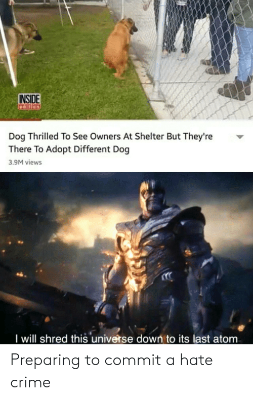 Crime, Dog, and Atom: INSIDE  Dog Thrilled To See Owners At Shelter But They're  There To Adopt Different Dog  3.9M views  I will shred this universe down to its last atom Preparing to commit a hate crime