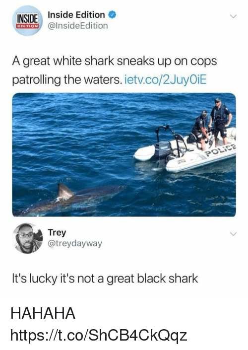 Funny, Shark, and Black: INSIDE Inside Edition  @lnsideEdition  EDITION  A great white shark sneaks up on cops  patrolling the waters. ietv.co/2JuyOiE  Trey  @treydayway  It's lucky it's not a great black shark HAHAHA https://t.co/ShCB4CkQqz
