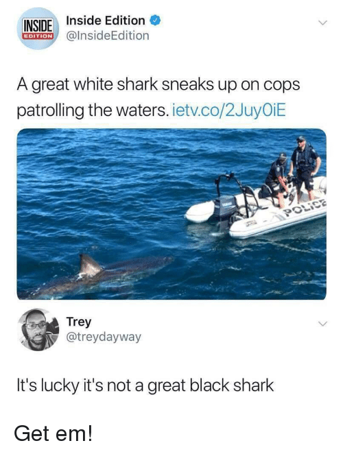 inside edition: INSIDE Inside Edition  @lnsideEdition  EDITION  A great white shark sneaks up on cops  patrolling the waters. ietv.co/2JuyOiE  Trey  @treydayway  It's lucky it's not a great black shark Get em!