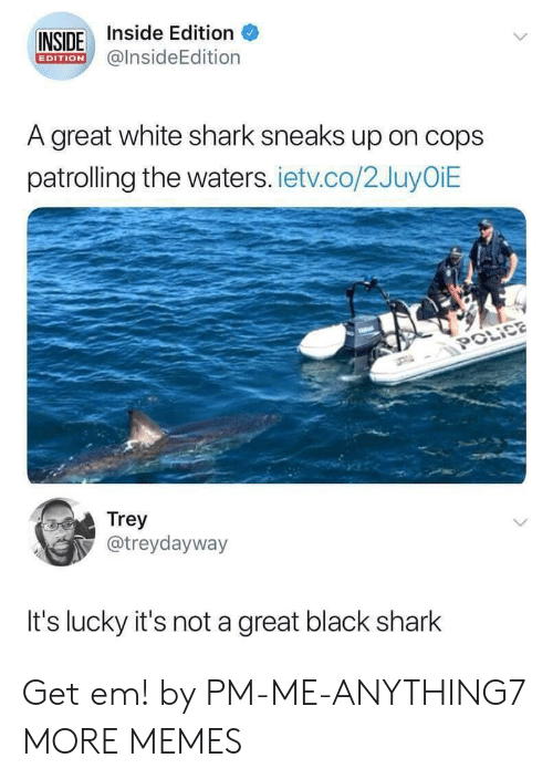 inside edition: INSIDE Inside Edition  @lnsideEdition  EDITION  A great white shark sneaks up on cops  patrolling the waters. ietv.co/2JuyOiE  Trey  @treydayway  It's lucky it's not a great black shark Get em! by PM-ME-ANYTHING7 MORE MEMES