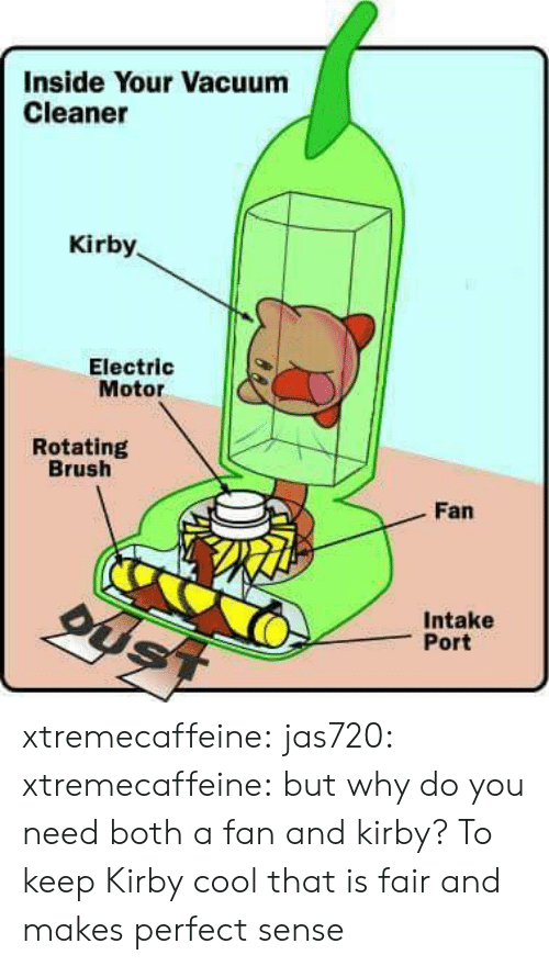 makes-perfect-sense: Inside Your Vacuum  Cleaner  Kirby  Electric  Motor  Rotating  Brush  Fan  Intake  Port xtremecaffeine: jas720:   xtremecaffeine:  but why do you need both a fan and kirby?  To keep Kirby cool   that is fair and makes perfect sense