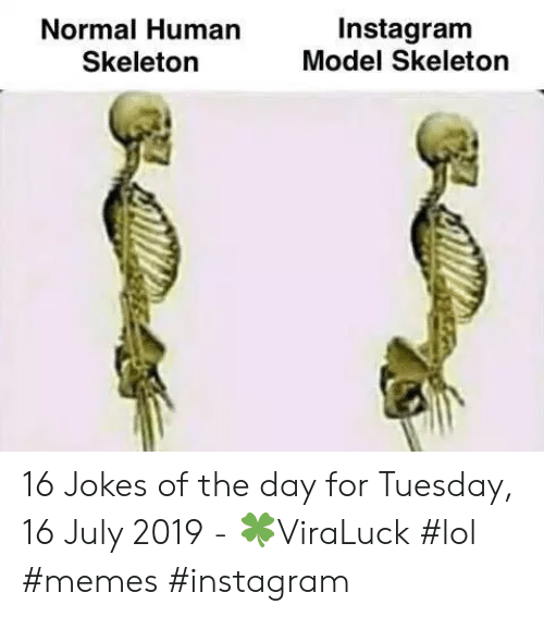 Instagram, Lol, and Memes: Instagram  Model Skeleton  Normal Human  Skeleton 16 Jokes of the day for Tuesday, 16 July 2019 - 🍀ViraLuck #lol #memes #instagram