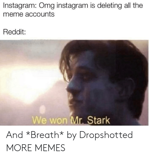 Deleting: Instagram: Omg instagram is deleting all the  meme accounts  Reddit:  We won Mr. Stark And *Breath* by Dropshotted MORE MEMES