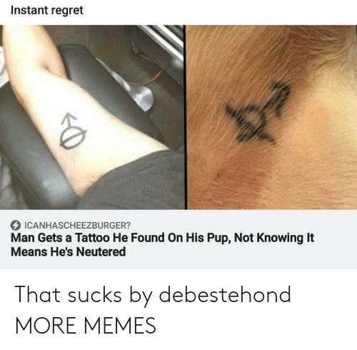 PUP: Instant regret  ICANHASCHEEZBURGER?  Man Gets a Tattoo He Found On His Pup, Not Knowing It  Means He's Neutered That sucks by debestehond MORE MEMES