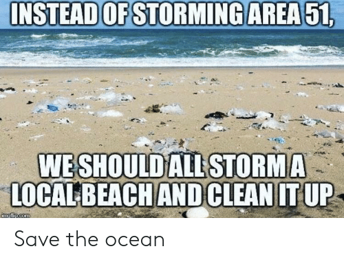 Ocean, Com, and Local: INSTEAD OF STORMING AREA51,  WE SHOULD ALL STORMA  LOCAL BEACHANDCLEAN IT UP  imgfip.com Save the ocean