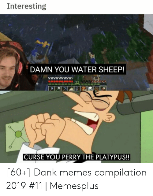 Memes Compilation: Interesting  DAMN YOU WATER SHEEP!  www  32  CURSE YOU PERRY THE PLATYPUS!! [60+] Dank memes compilation 2019 #11 | Memesplus