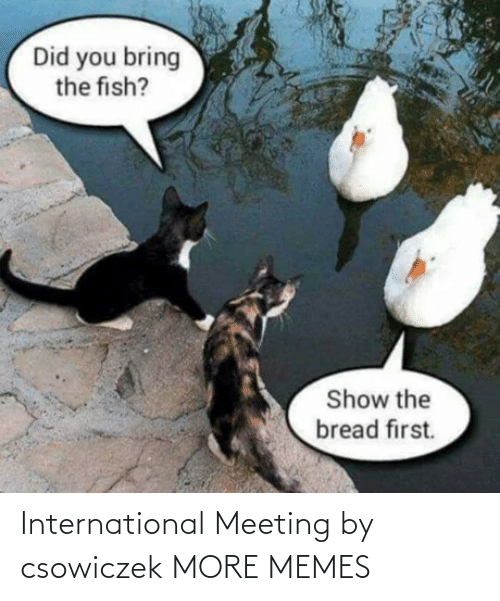 Dank, Memes, and Target: International Meeting by csowiczek MORE MEMES