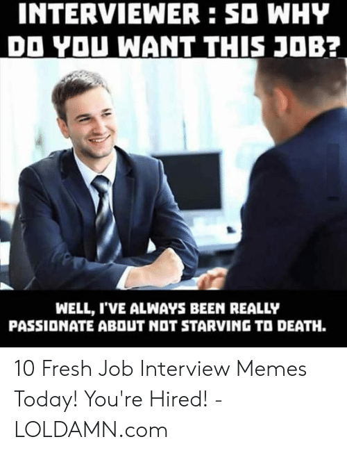 You Re Meme: INTERVIEWER:SO WHY  DO YOU WANT THIS J0B?  WELL, I'VE ALWAYS BEEN REALLY  PASSIONATE ABOUT NOT STARVING TO DEATH. 10 Fresh Job Interview Memes Today! You're Hired! - LOLDAMN.com