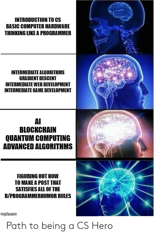 computing: INTRODUCTION TO CS  BASIC COMPUTER HARDWARE  THINKING LIKE A PROGRAMMER  INTERMEDIATE ALGORITHMS  GRADIENT DESCENT  INTERMEDIATE WEB DEVELOPMENT  INTERMEDIATE GAME DEVELOPMENT  AI  BLOCKCHAIN  QUANTUM COMPUTING  ADVANCED ALGORITHMS  FIGURING OUT HOW  TO MAKE A POST THAT  SATISFIES ALL OF THE  R/PROGRAMMERHUMOR RULES  ingfip.com Path to being a CS Hero
