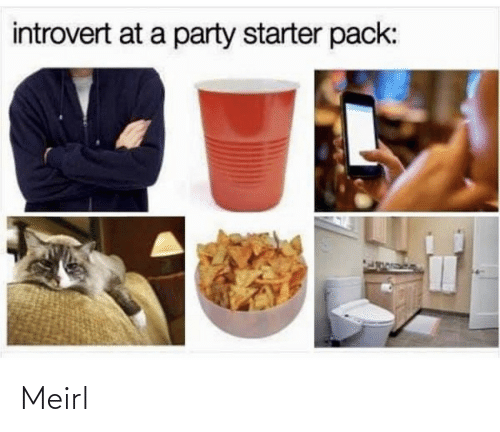 introvert: introvert at a party starter pack: Meirl