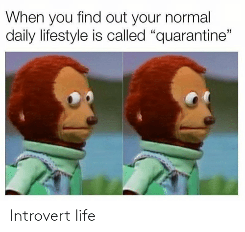 introvert: Introvert life