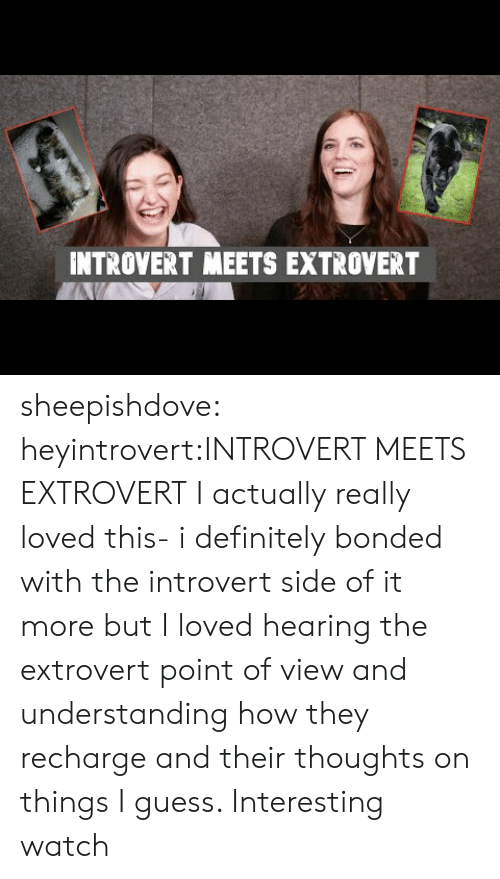 Definitely, Introvert, and Tumblr: INTROVERT MEETS EXTROVERT sheepishdove:  heyintrovert:INTROVERT MEETS EXTROVERT I actually really loved this- i definitely bonded with the introvert side of it more but I loved hearing the extrovert point of view and understanding how they recharge and their thoughts on things I guess. Interesting watch