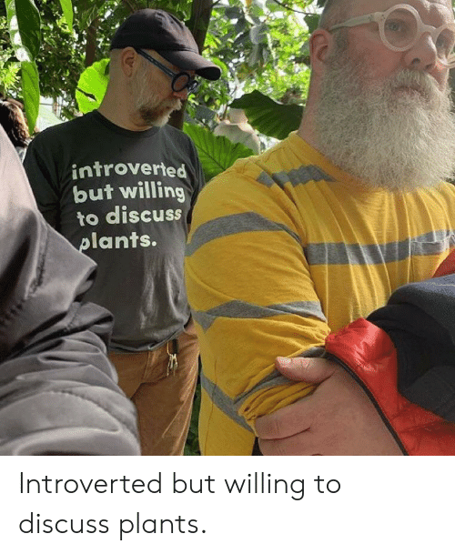 Ants, Introverted, and  Plants: introverted  but willing  to discuss  ants. Introverted but willing to discuss plants.