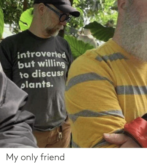 My Only: introverted  but willing  to discuss  plants. My only friend