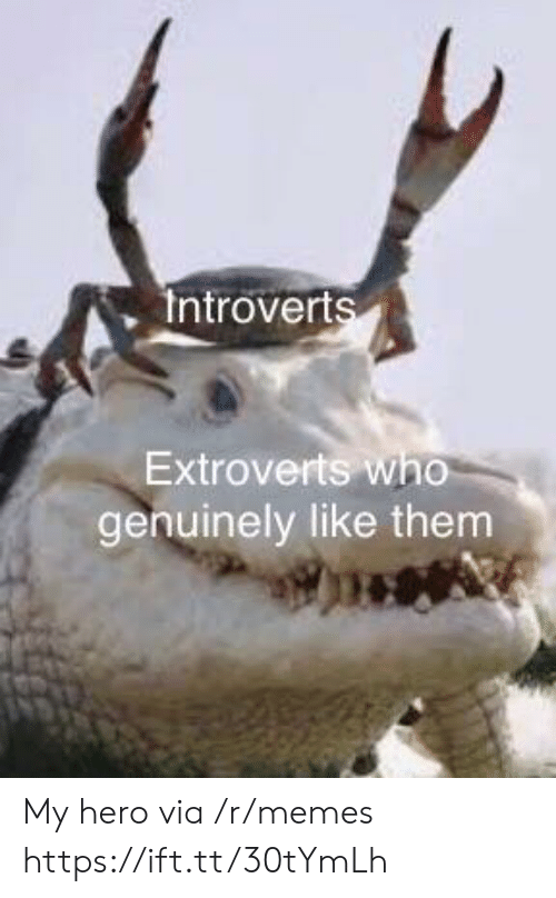 Memes, My Hero, and Hero: Introverts  Extroverts who  genuinely like them My hero via /r/memes https://ift.tt/30tYmLh