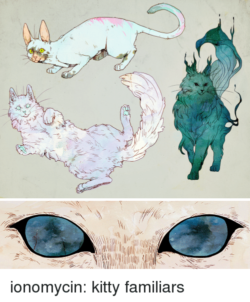 Tumblr, Blog, and Http: ionomycin: kitty familiars