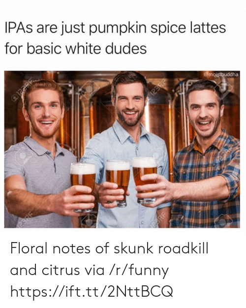 Funny, Pumpkin, and White: IPAs are just pumpkin spice lattes  for basic white dudes  @moistbuddha Floral notes of skunk roadkill and citrus via /r/funny https://ift.tt/2NttBCQ