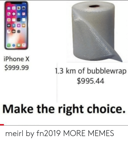 Iphone X: iPhone X  $999.99  1.3 km of bubblewrap  $995.44  Make the right choice. meirl by fn2019 MORE MEMES