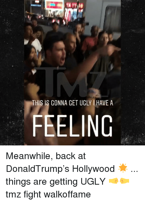 cet: IR  THIS IS GONNA CET UGLY HAVE A  FEELING Meanwhile, back at DonaldTrump's Hollywood 🌟 ... things are getting UGLY 🤜🤛 tmz fight walkoffame