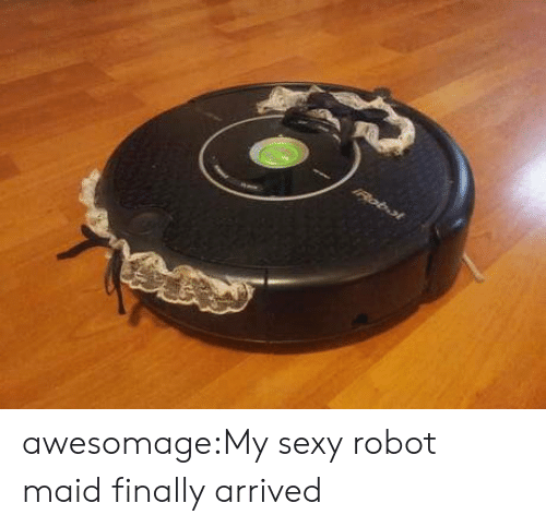 Vacuum: IRobol awesomage:My sexy robot maid finally arrived