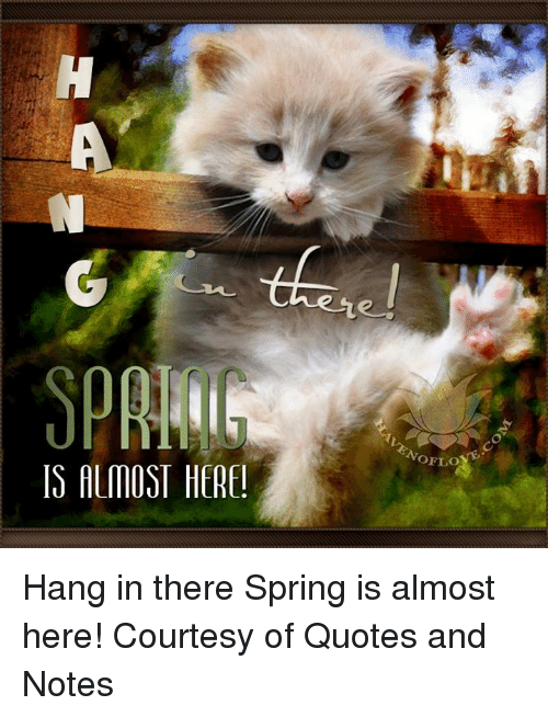 IS ALMOST HERE Hang In There Spring Is Almost Here Courtesy Of Fascinating Hang In There Quotes