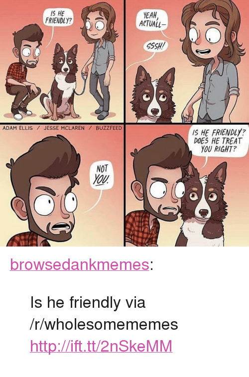 """ssh: IS HE  FRIENDLY?  ACTUAL  EAH  SSH!  ADAM ELLIS JESSE MCLARENBUZZFEED  IS HE FRIENDLY?  DOES HE TREAT  YOU RIGHT?  NOT <p><a href=""""http://browsedankmemes.com/post/159300700986/is-he-friendly-via-rwholesomememes"""" class=""""tumblr_blog"""">browsedankmemes</a>:</p>  <blockquote><p>Is he friendly via /r/wholesomememes <a href=""""http://ift.tt/2nSkeMM"""">http://ift.tt/2nSkeMM</a></p></blockquote>"""