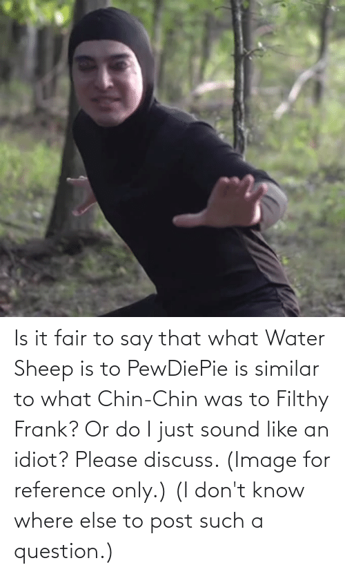 Filthy Frank: Is it fair to say that what Water Sheep is to PewDiePie is similar to what Chin-Chin was to Filthy Frank? Or do I just sound like an idiot? Please discuss. (Image for reference only.) (I don't know where else to post such a question.)
