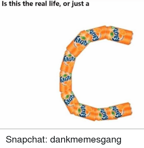 Life, Memes, and Snapchat: Is this the real life, or just a  fan Snapchat: dankmemesgang