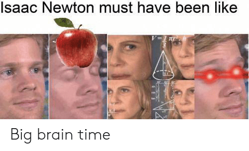 Brain, Time, and Isaac Newton: Isaac Newton must have been like Big brain time