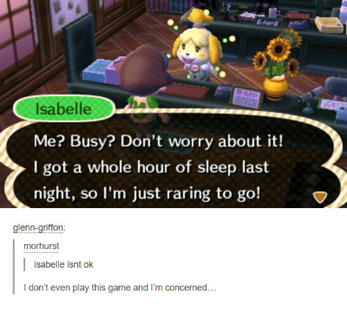 griffon: Isabelle  Me? Busy? Don't worry about it!  I got a whole hour of sleep last  night, so I'm just raring to go!  glenn-griffon  mor hurst  isabelle isnt ok  don't even play this game and I'm concerned...